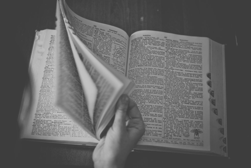 l'indispensable dictionnaire